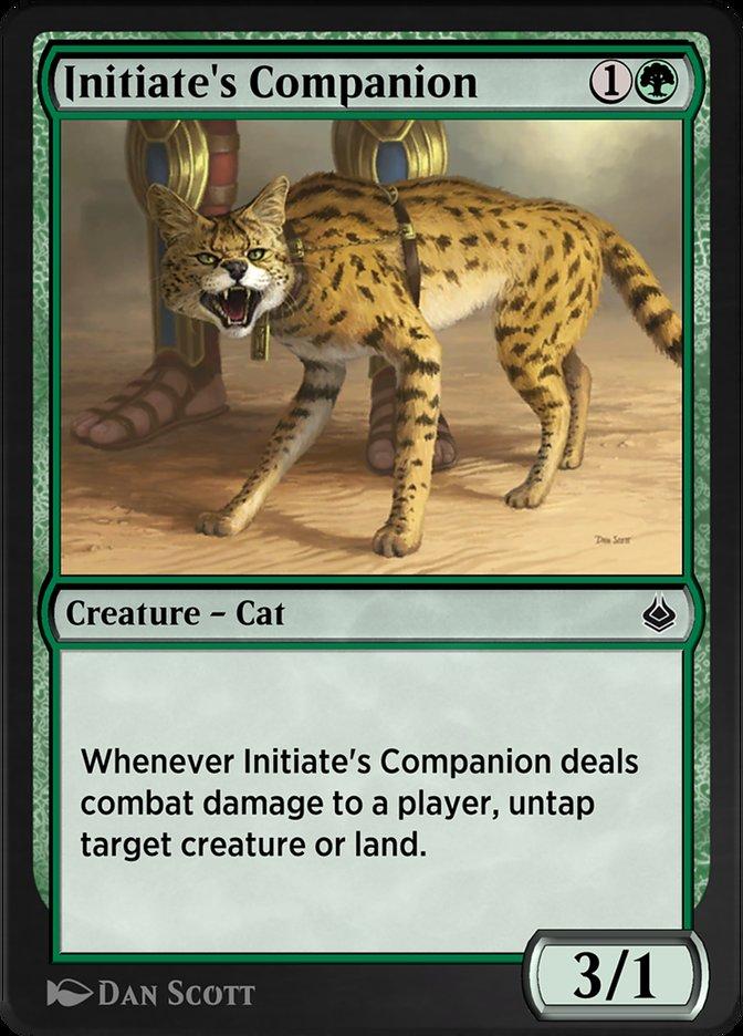 Carta /Initiate's Companion de Magic the Gathering
