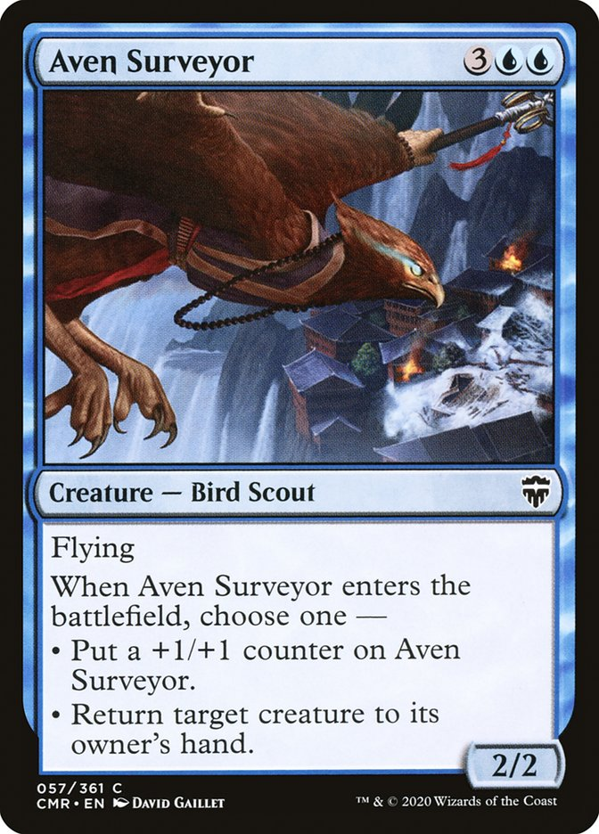 Carta /Aven Surveyor de Magic the Gathering