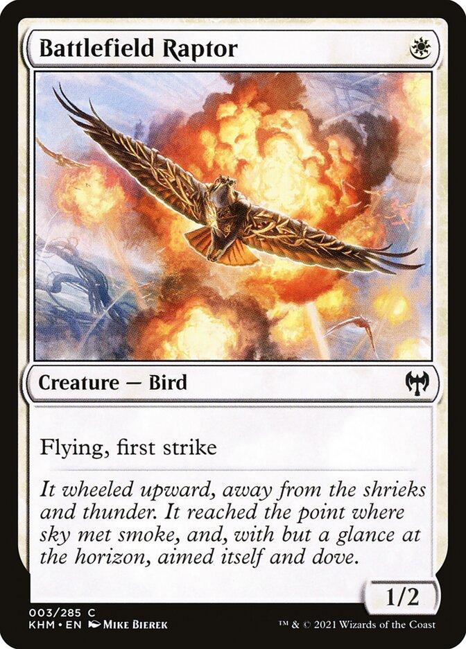 Carta /Battlefield Raptor de Magic the Gathering