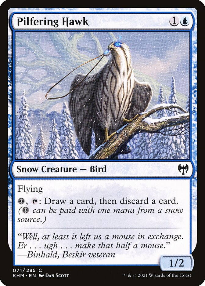 Carta /Pilfering Hawk de Magic the Gathering