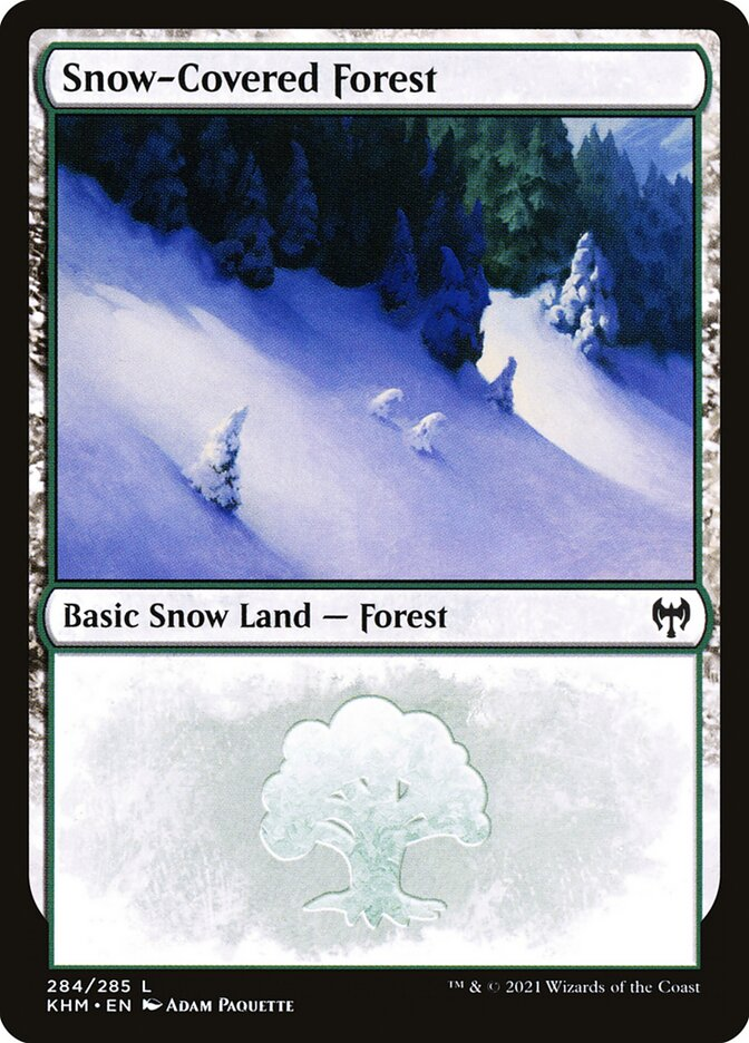 Carta /Snow-Covered Forest de Magic the Gathering